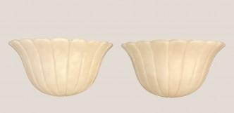 appliques coquillage